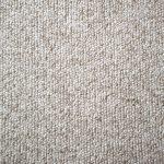 Can Guinea Pigs Eat Carpet?
